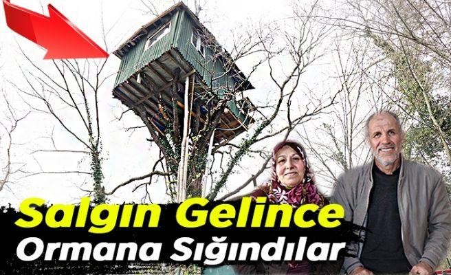 Salgından korunmak için ağaç evde yaşıyorlar