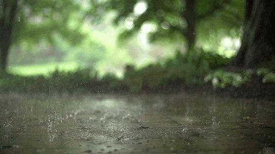 Sakarya'da havalar nasıl olacak? 5 günlük hava durumu...