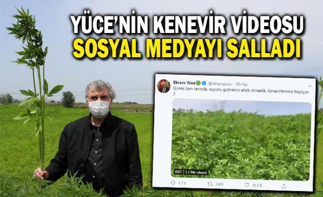 Yüce'nin kenevir videosu sosyal medyayı salladı