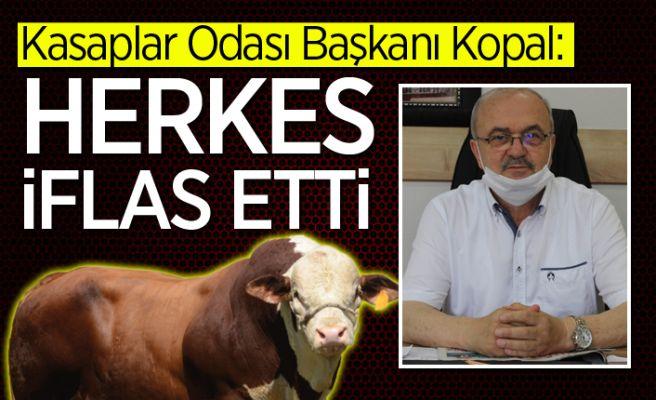 Sakarya'daki hayvan üretimi için acı sözler...