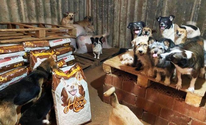 Hayvan barınağına 200 çuval mama götürdüler