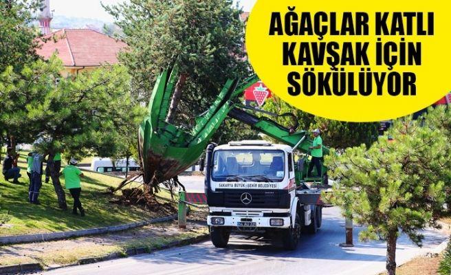 SGK kavşağındaki ağaçlar sökülüyor