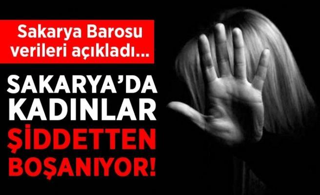 Sakarya'da boşanmaların en büyük sebebi şiddet!