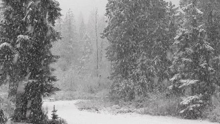 Meteoroloji'den kar uyarısı: Sakarya da var
