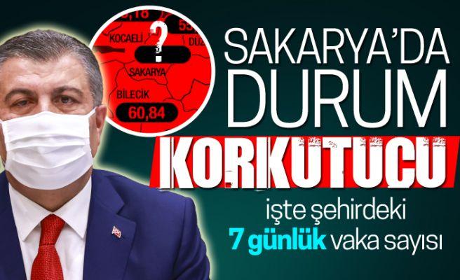 İşte Sakarya'da 7 günlük vaka sayısı! Bakan Koca açıkladı...