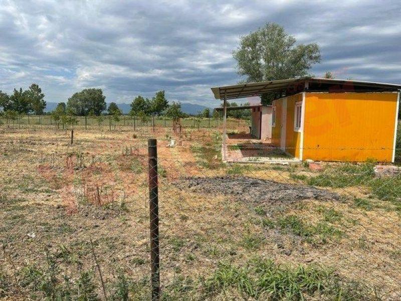 Tarım arazileri için yeni tehlike: Tarla kondu