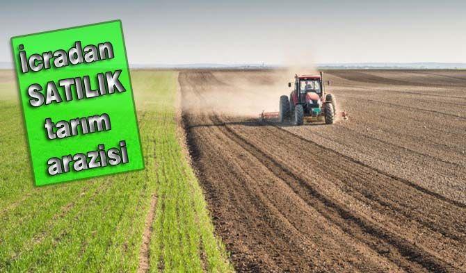 İcradan satılık tarım arazisi