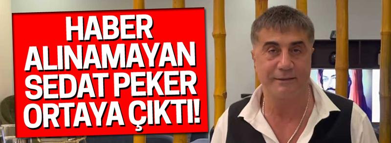 Haber alınamayan Sedat Peker ortaya çıktı!