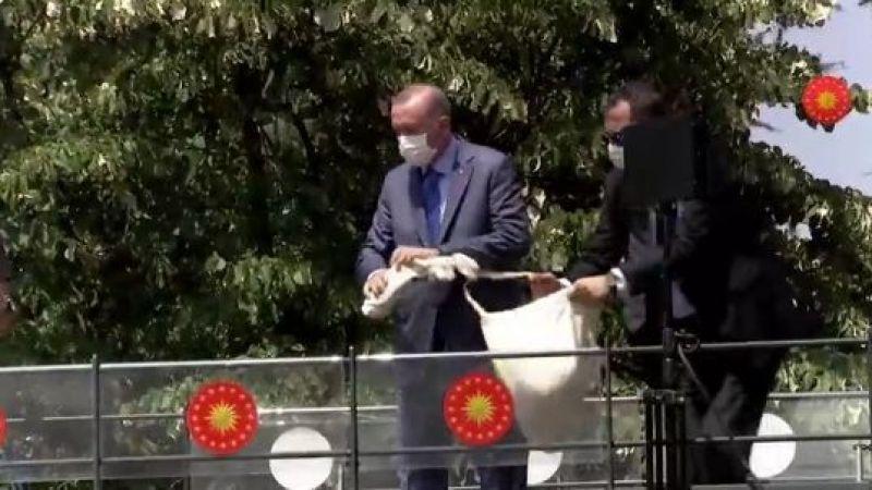 Erdoğan işçilere çay dağıttı