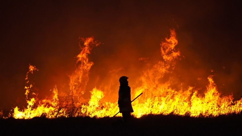 Orman yangınını o kişi çıkarmış!