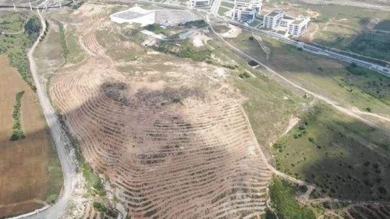 Bilişim Vadisine 40 bin ağaç