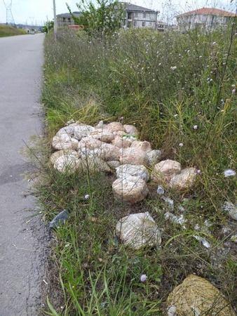 Yol kenarına atılan o poşetler mahallenin kabusu oldu