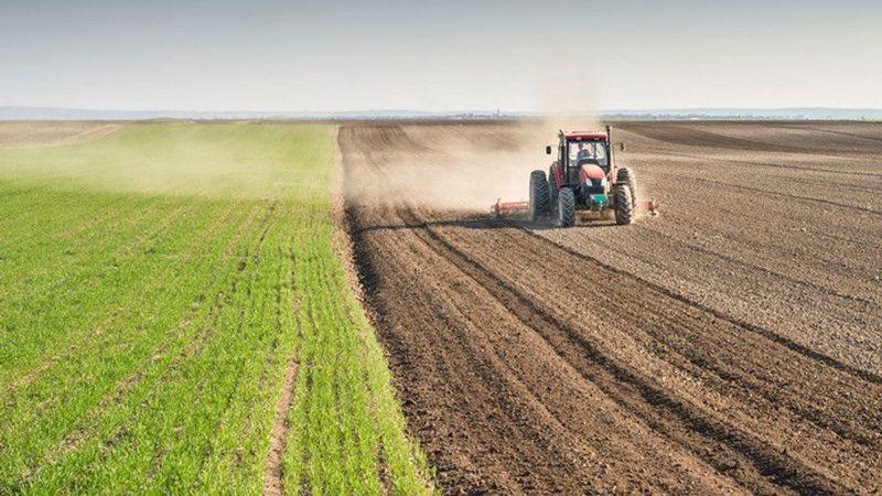 8142 m² tarım arazisi mahkeme kararı ile satılacak