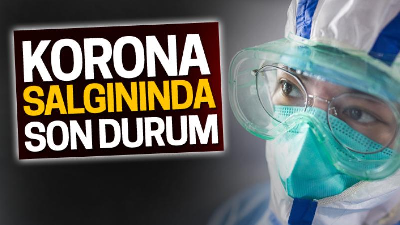 Koronavirüste son durum!