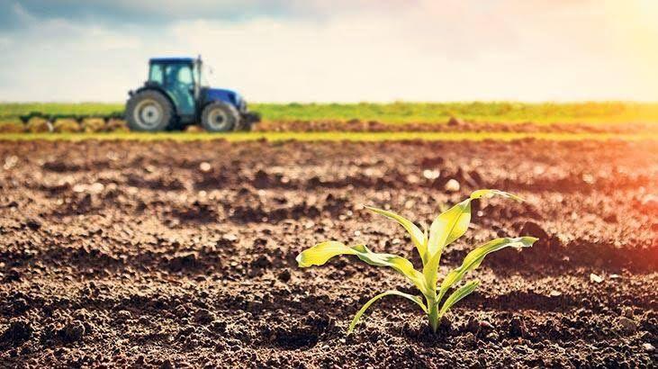 2500 m² satılık tarım arazisi