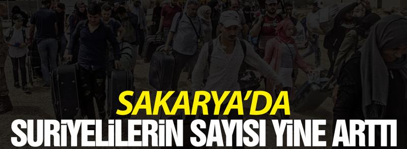 İşte Sakarya'daki Suriyeli sayısı! Dikkat çeken artış
