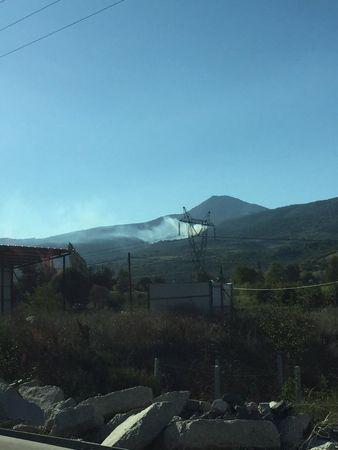 Pamukova'da orman yangını!