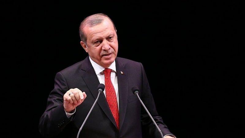 Cumhurbaşkanı Erdoğan termik santral yasasını veto etti!