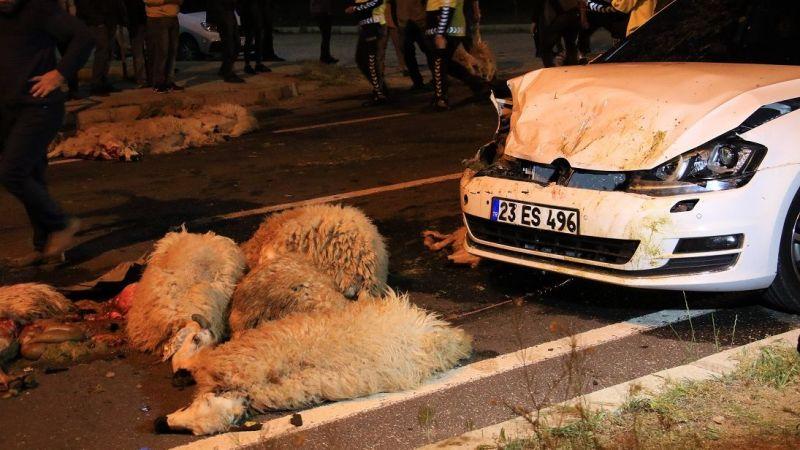 Yarış yapan 2 otomobil 30 koyunu telef etti
