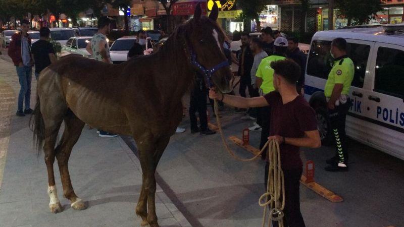 Elbistan'da trafiği alt üst eden at polis tarafından yakalandı