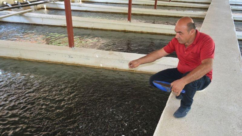 Elbistan Balık Dünyası yılda 3 milyon alabalık yavrusu üretiyor