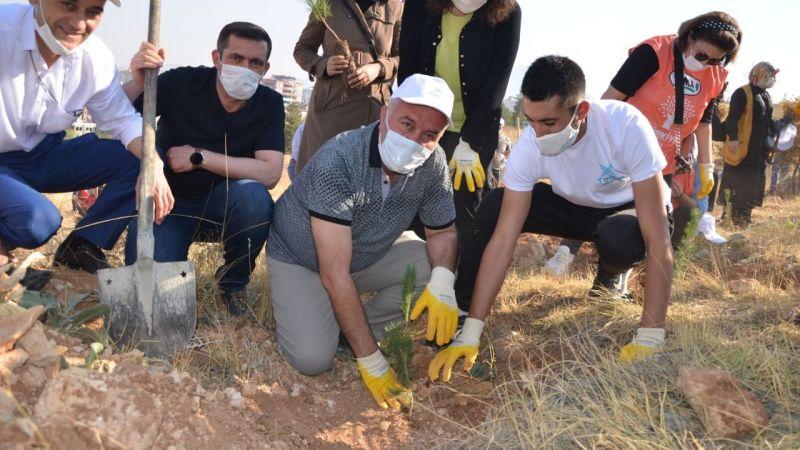 Elbistan'da orman yangınlarına tepki çekmek için 500 fidan dikildi