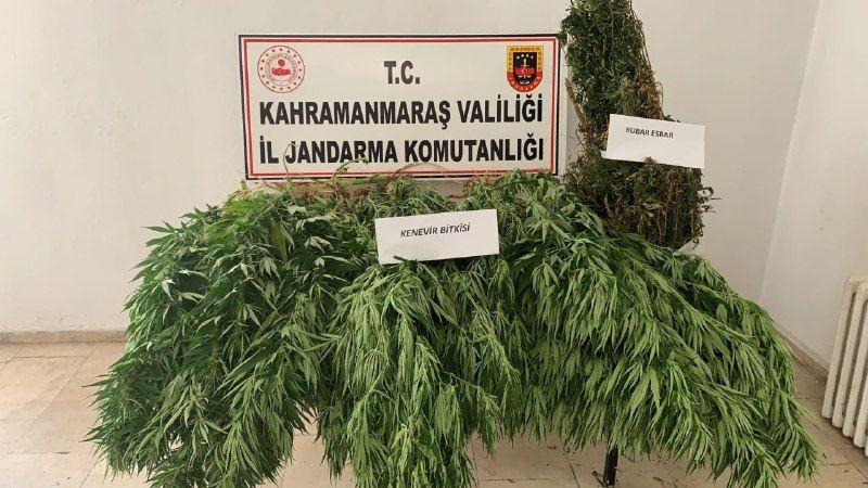 Elbistan'da uyuşturucu operasyonu: 1 gözaltı