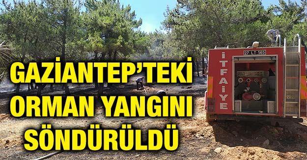 Gaziantep'teki orman yangını söndürüldü