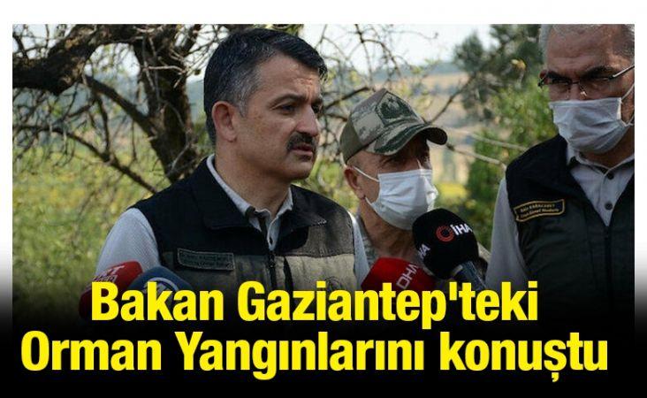 Bakan Gaziantep'teki Orman Yangınlarını konuştu