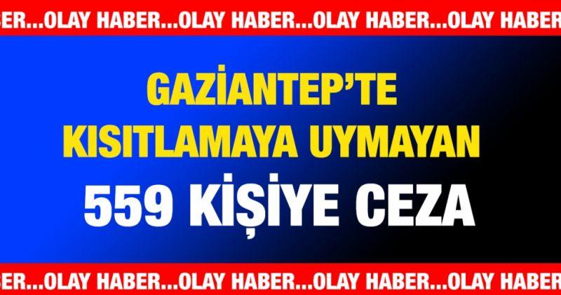 Gaziantep'te kısıtlamaya uymayan 559 kişiye ceza