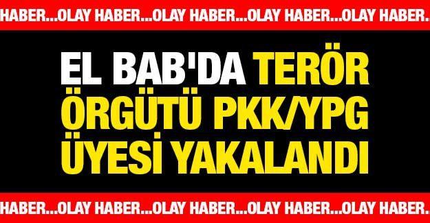 El Bab'da terör örgütü PKK/YPG üyesi yakalandı