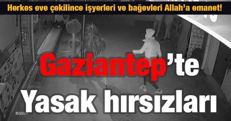 Gaziantep'te Yasak hırsızları    Herkes eve çekilince işyerleri ve bağevleri Allah'a emanet!