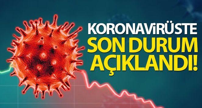 Türkiye'de son 24 saatte 5.277 koronavirüs vakası tespit edildi
