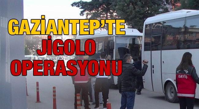 Jigolo Operasyonunda Gaziantep'te Tutuklamalar
