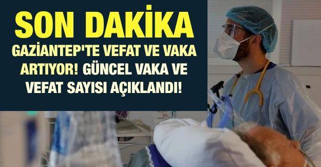 Son dakika Gaziantep'te vefat ve vaka artıyor! Güncel vaka ve vefat sayısı açıklandı! İşte 12 Şubat corona tablosu