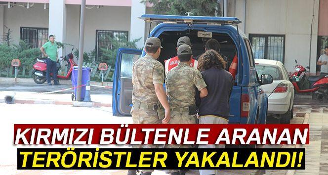 Son dakika haberi: Kırmızı bültenle aranan DEAŞ'lı terörist Kilis'te Suriye sınırında yakalandı