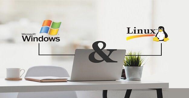 Windows Hosting mi Linux Hosting mi Sizin İçin Uygun?