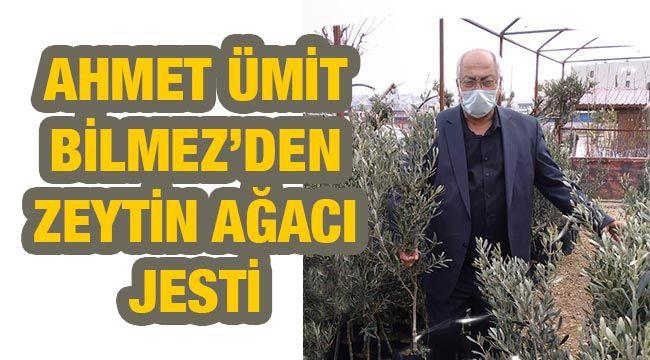 Gaziantepli Ahmet Ümit Bilmez'den zeytin ağacı jesti