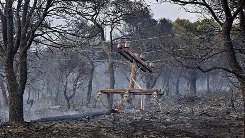 Yunanistan'daki orman yangını 40 bin dönümden fazla alanı küle çevirdi