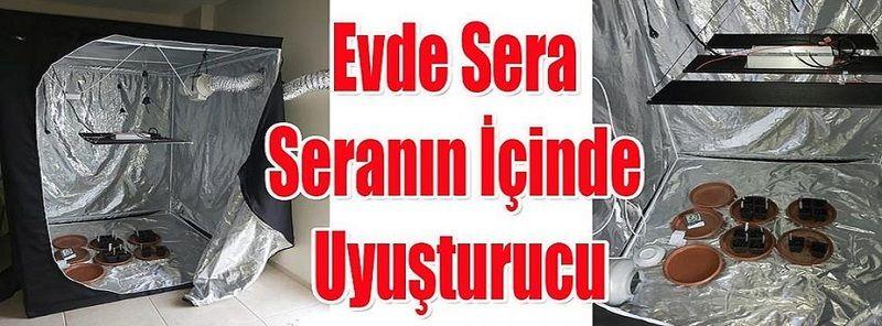 Son Dakika...Gaziantep'te Oda içinde Serada Uyuşturucu Yetiştiriyorlardı...Yakayı Ele Verdiler