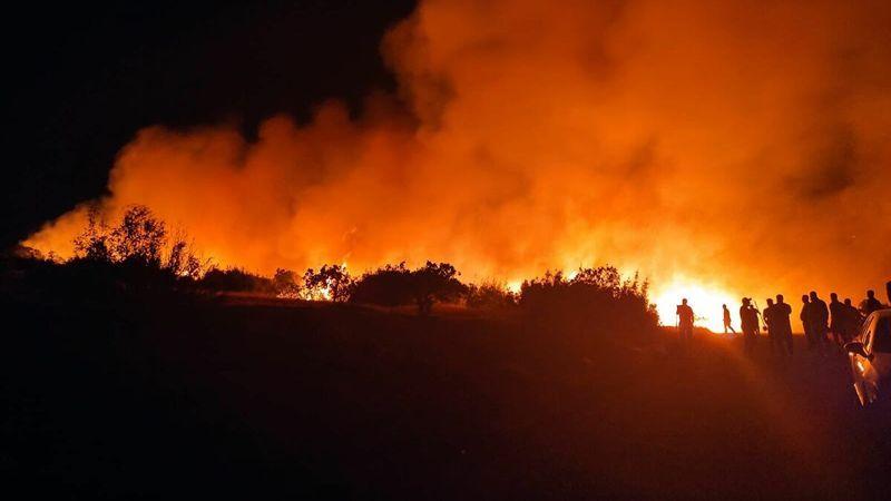 Son dakika! Nizip'te şok yangın! 15'ten fazla itfaiye aracı yangına müdahale etti…