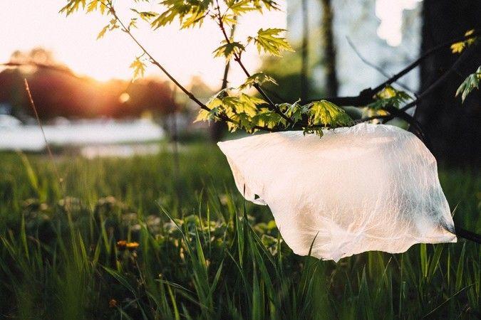 Plastik Saklama Kapları Sağlık Açısından Tehlikeli Olabilir