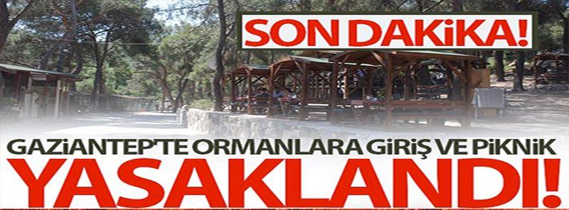 Gaziantep Valisi Gül'den Açıklama;Gaziantep'te ormanlara girişler 15 gün süre ile yasaklandı
