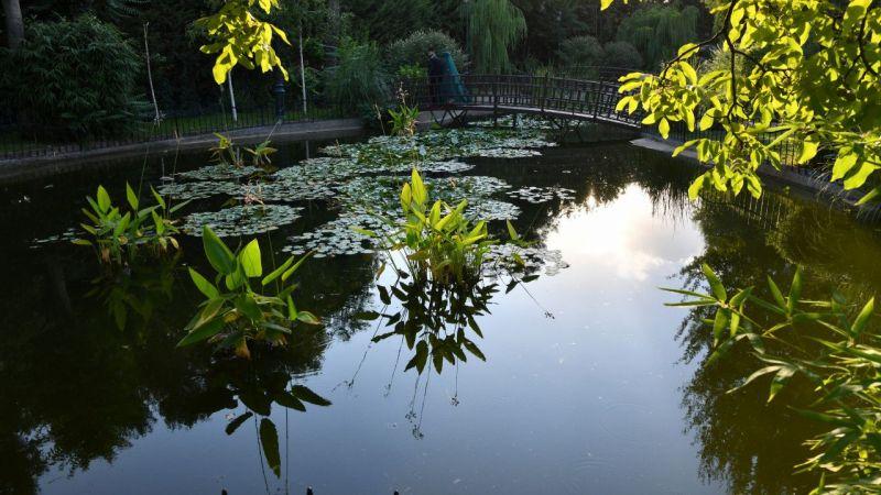 Gaziantep Botanik Bahçesi,ziyaretçilerini ağırlıyor