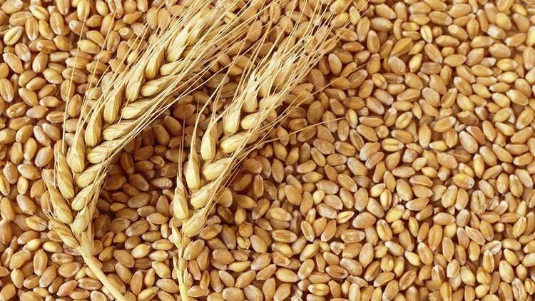 """Son Dakika:Gaziantep'te 40 bin ton buğdayı 'ŞAiBELİ ŞEKİLDE' düşük fiyattan  alan hangi makarna fabrikası? Gaziantep'te Bir Fabrikaya 40 Bin Ton """" Şaibeli Buğday """" Satış İddiası Meclise Taşındı"""