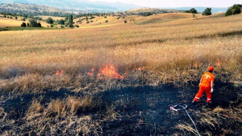 Yüksek gerilim hattı koptu, 3 dekar hububat ekili alan yandı