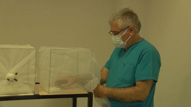 İBB'nin sineklere karşı yaptığı ilaçlar insanlara zarar veriyor