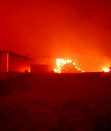 Aydın'daki yangın Muğla'ya sıçradı