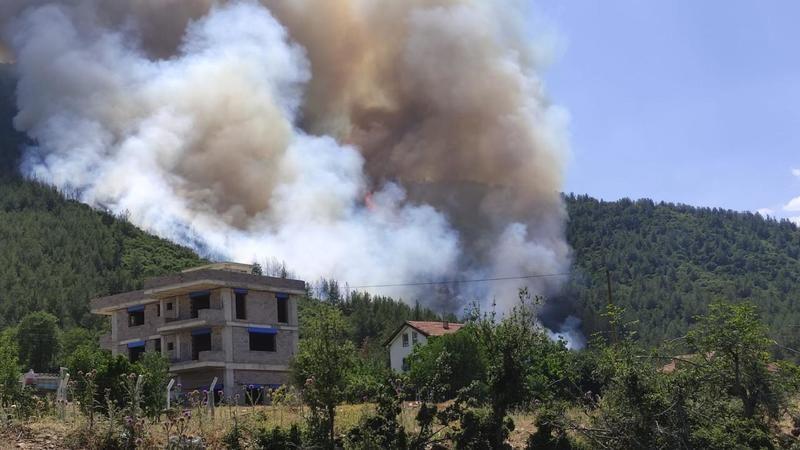 Denizli'de orman yangını paniği!