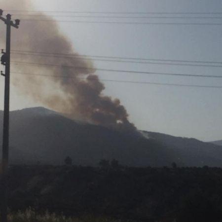 Bir yangın da Karacasu'da!